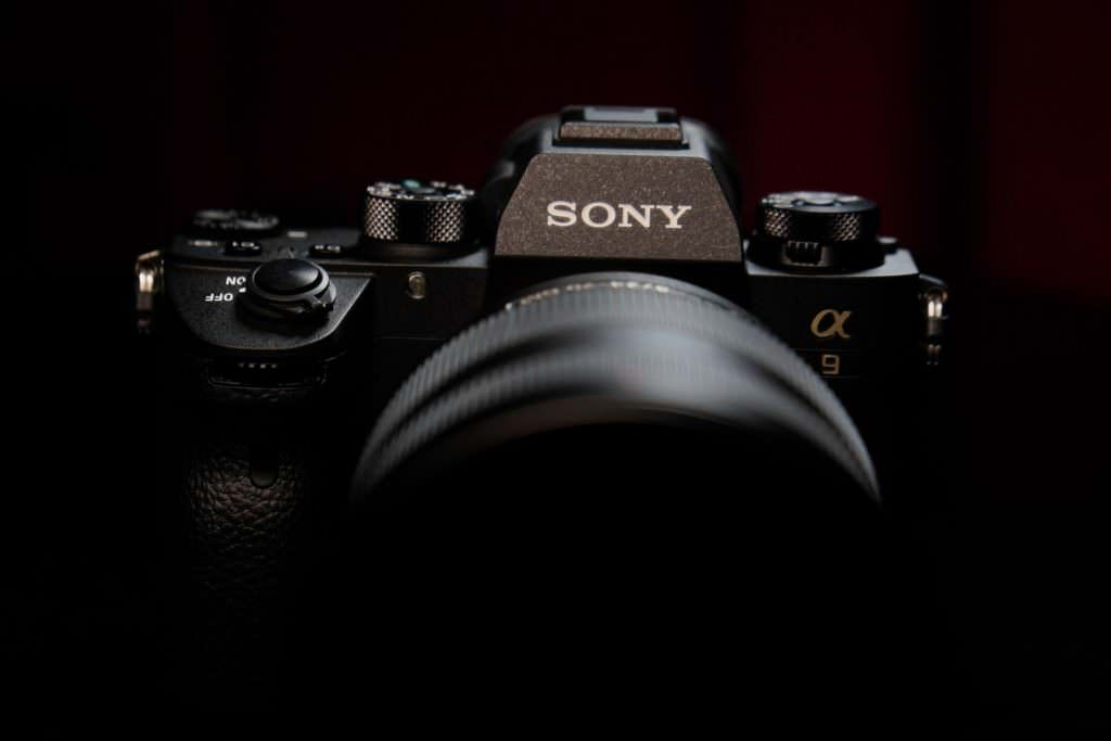 sony a9 vs canon 5ds vs nikon d5
