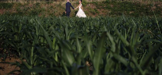 wedding in montelupo fiorentino - tuscany - italy